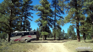 Grand Canyon RV Boondocking Site in Kaibab National Forest